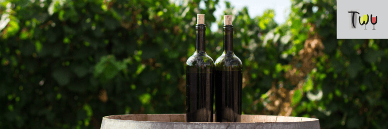 artigo_o que-são-os-taninos-do-vinho